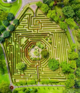 aerial view of a large maze made from hedges in a garden